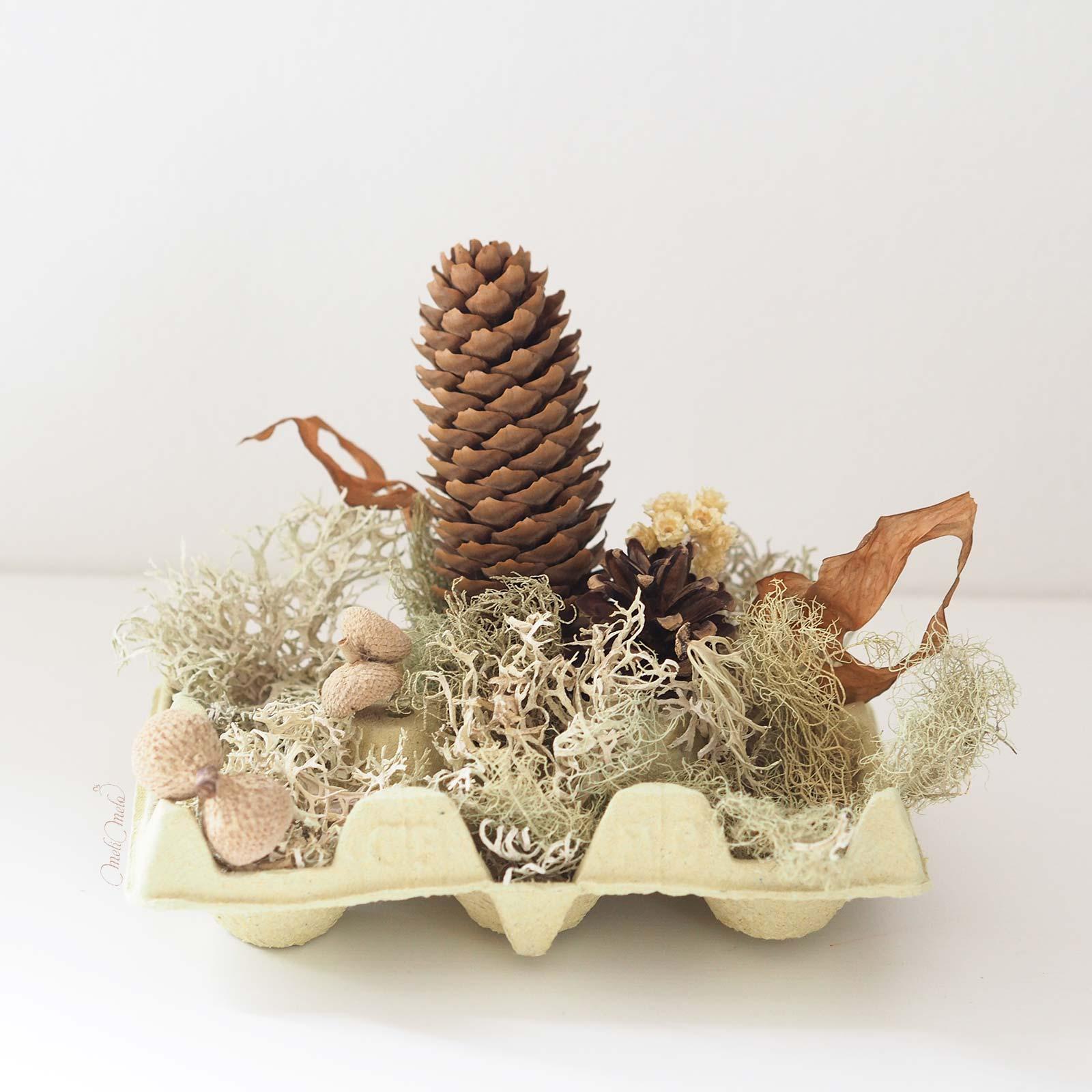 DIY-deco-automne-lichen-feuilles-fleurs-seches-boite-oeuf-laboutiquedemelimelo