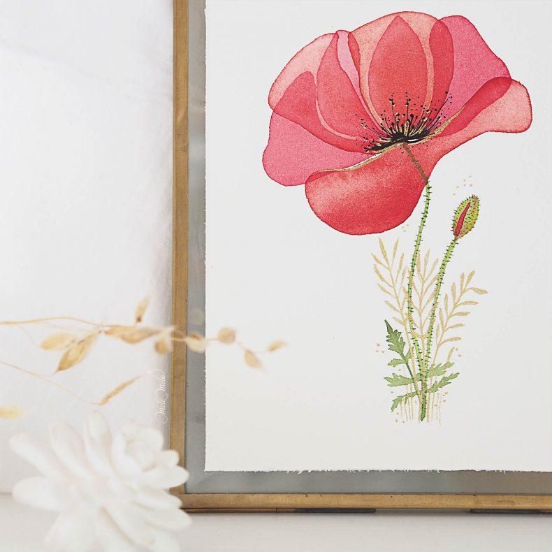 affiche-coquelicot-aquarelle-watercolor-poppy-tirage-art-papier-hahnemuhle-laboutiquedemelimelo