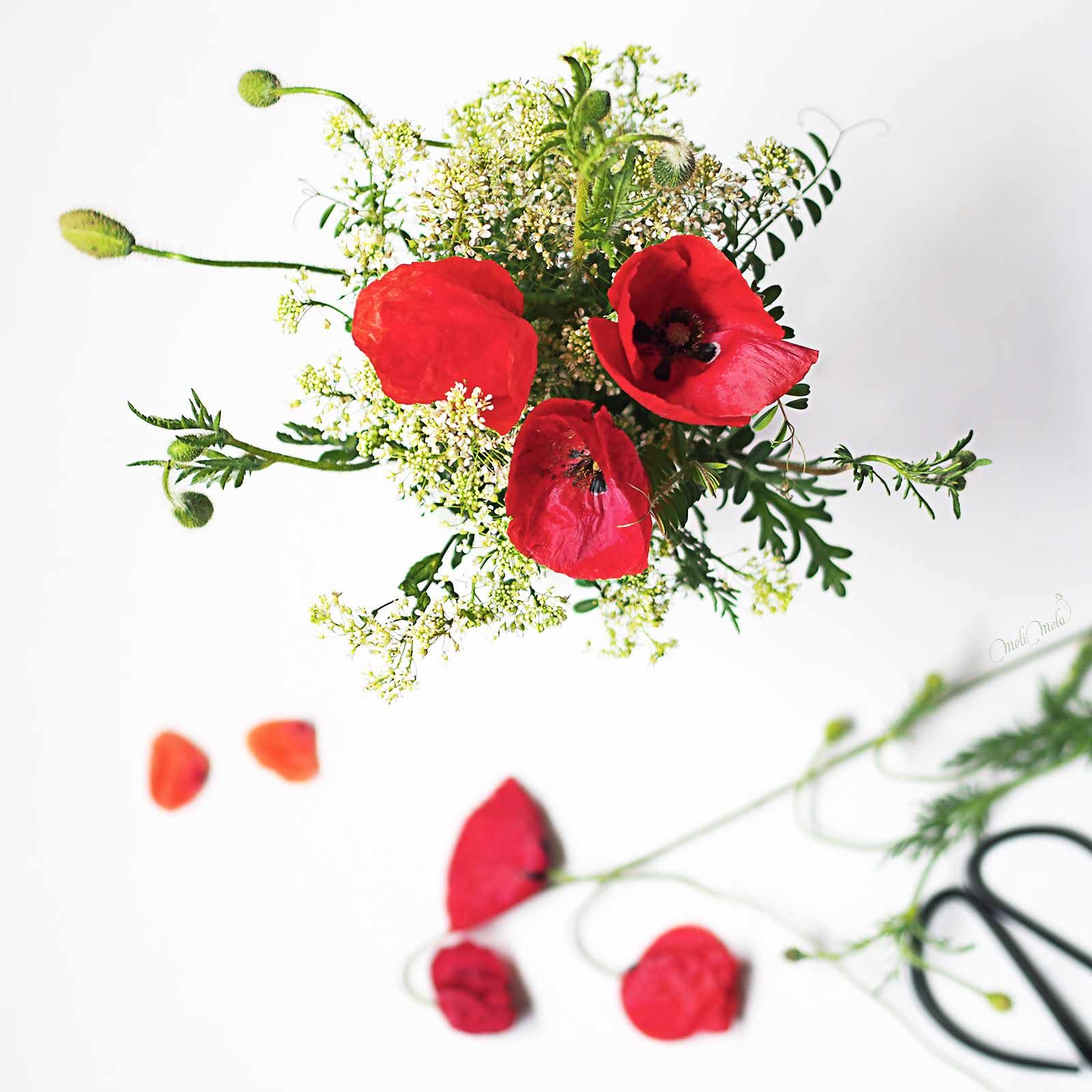 bouquet coquelicots akaaka rouge laboutiquedemelimelo inspiration
