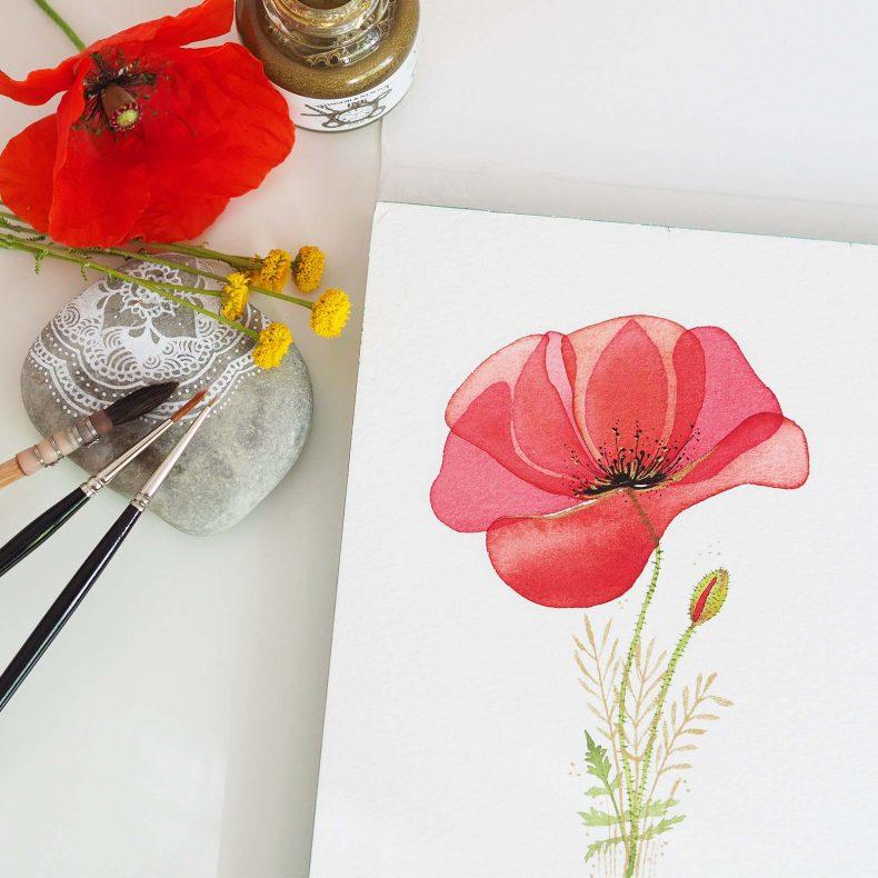 aquarelle-fine-coquelicot-poppy-watercolor-laboutiquedemelimelo