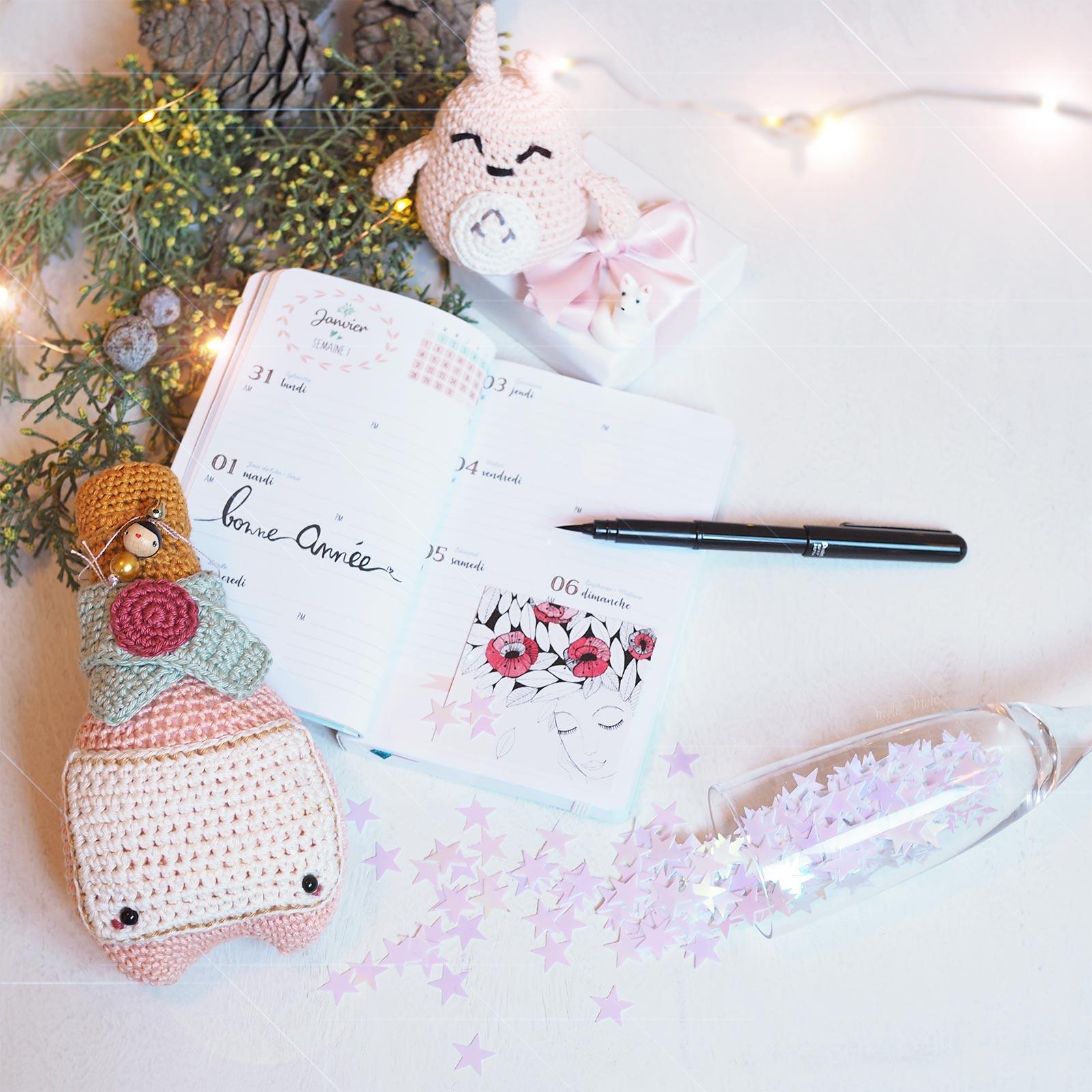 bonne année voeux 2019 crochet Totoro champagne chloé mignonneries émotion saisons Les Pois Plumes  laboutiquedemelimelo