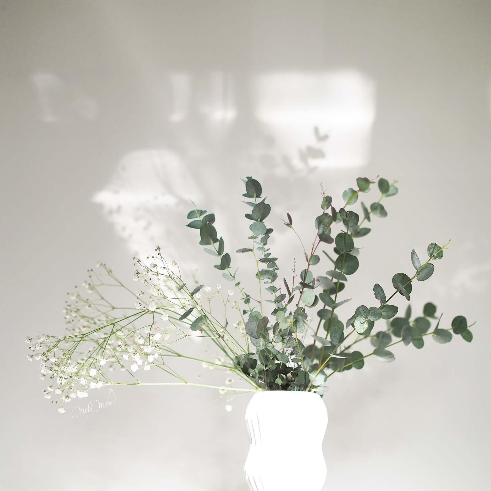 passion eucalyptus laboutiquedemelimelo