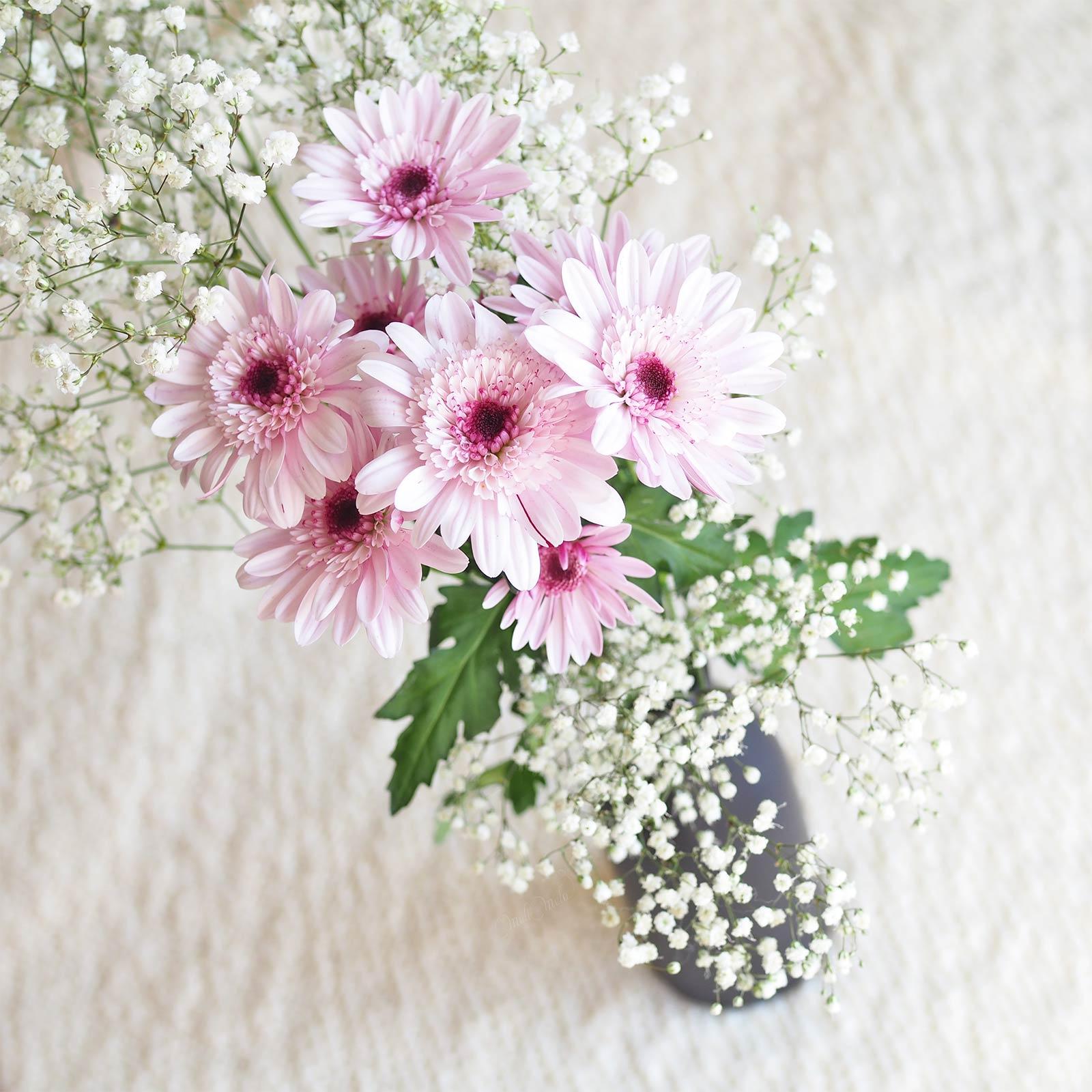 bouquet fleurs gerbera rose gypsophyle inspiration Boutique MeliMelo
