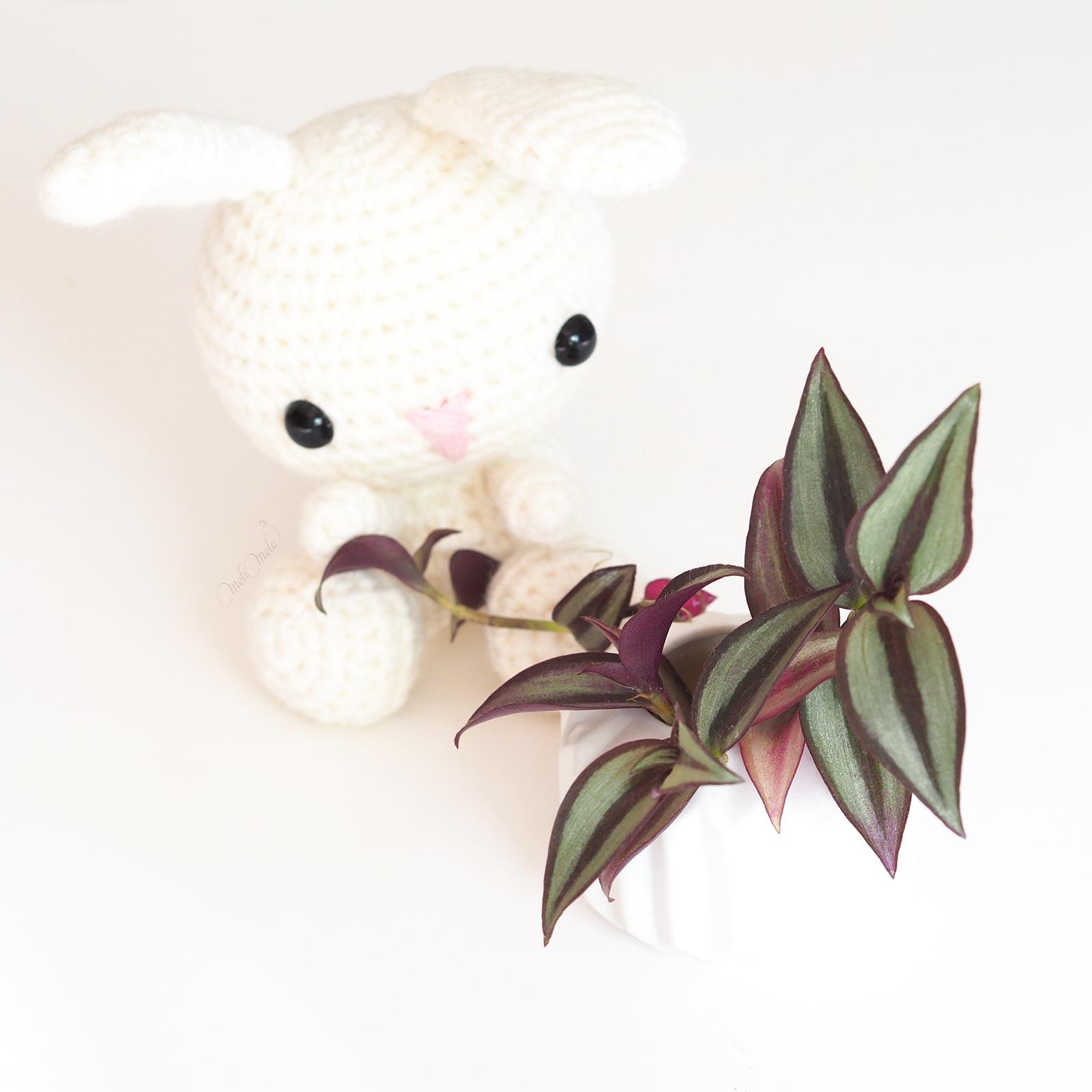 Tradescantia Zebrina Commelinacées boutures petit lapin crochet laboutiquedemelimelo