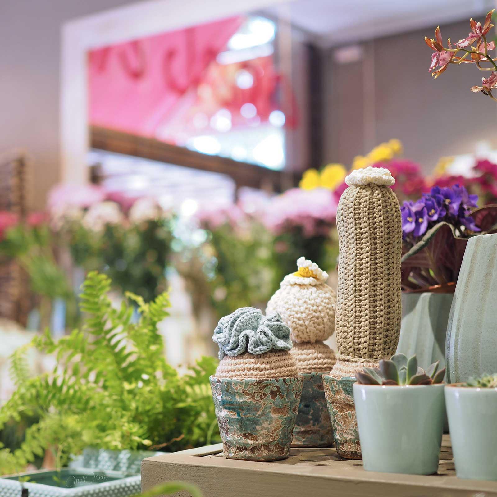 cactus trio crochet floristería Flores La Jara tiendas Valladolid laboutiquedemelimelo
