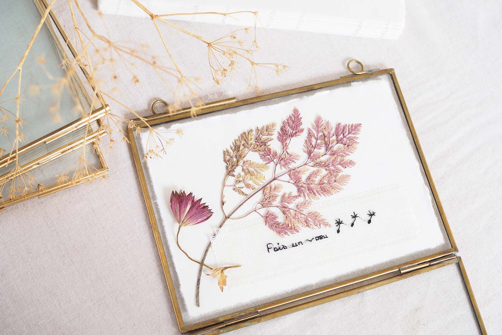 cadre-vegetal-herbier-fleur-astrance-feuillage-pourpre-laboutiquedemelimelo
