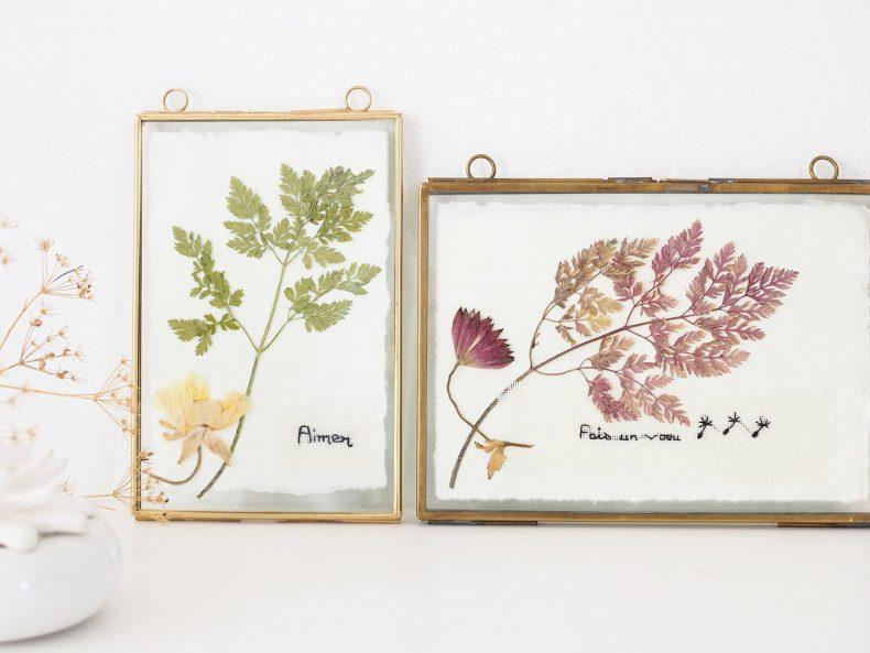 cadres-herbier-feuilles-fleurs-flowersbymelimelo-laboutiquedemelimelo