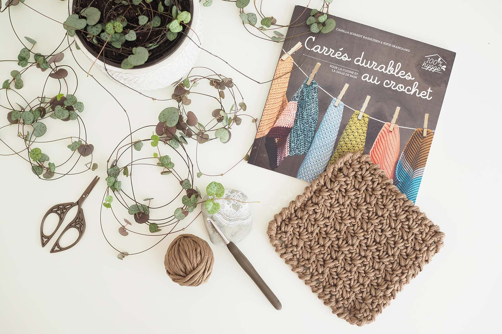 ceropegia-woodii-carres-durables-crochet-editions-mango-dmc-natura-xl-laboutiquedemelimelo