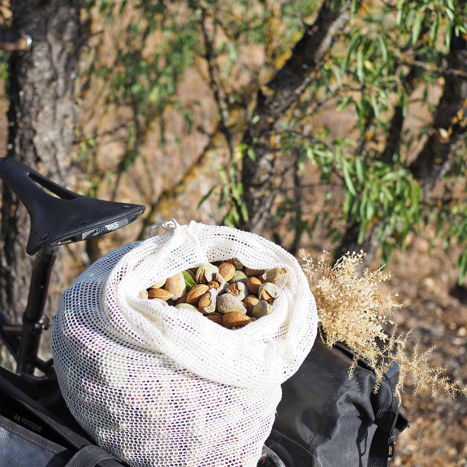 cosecha-almendras-septiembre-castilla-leon-escapada-bici-yoniquenews