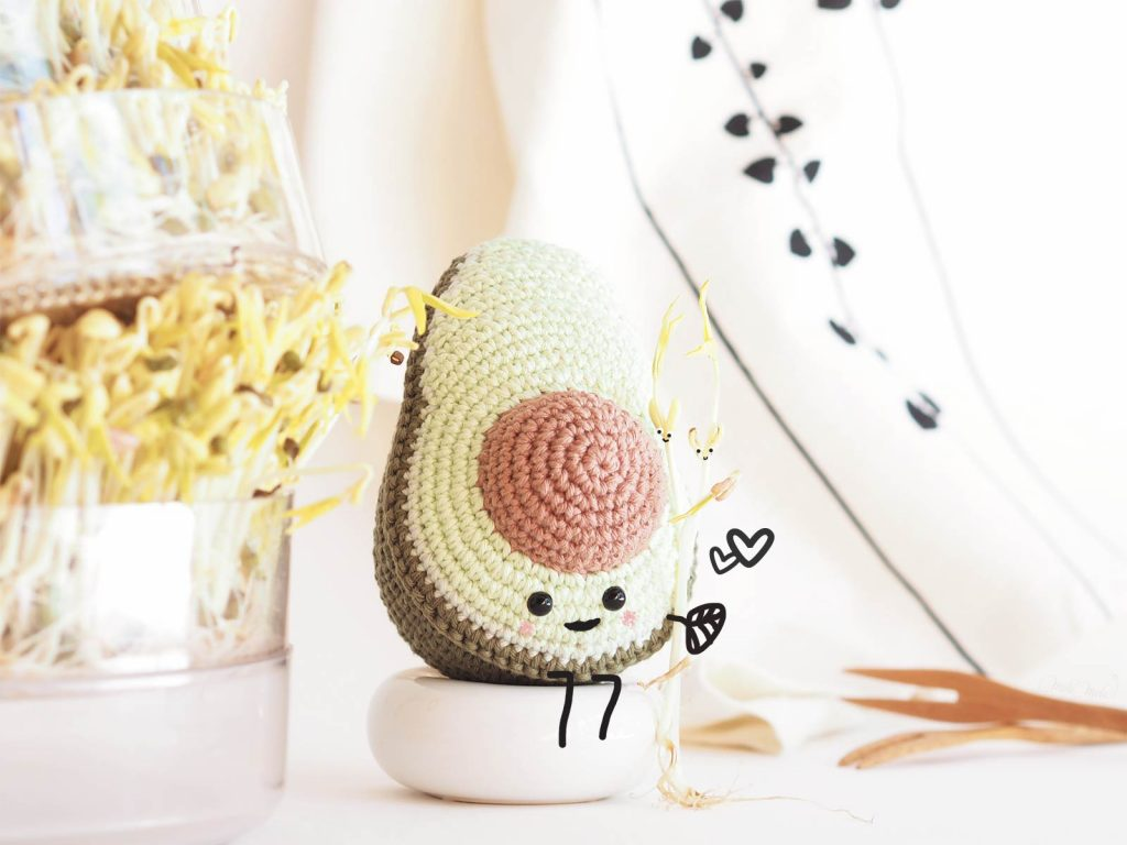 crochet avocat pousses soja germoir Biosnacky laboutiquedemelimelo