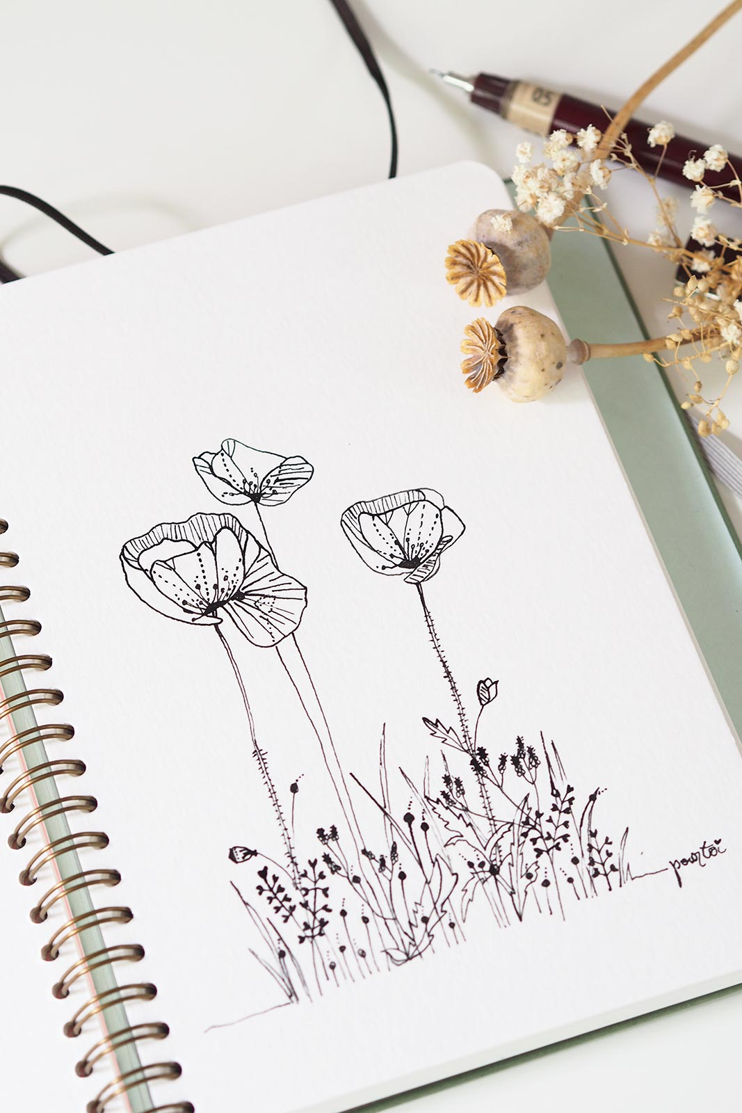 dessin coquelicots olalarte illustrations encre chine rotring boutique melimelo