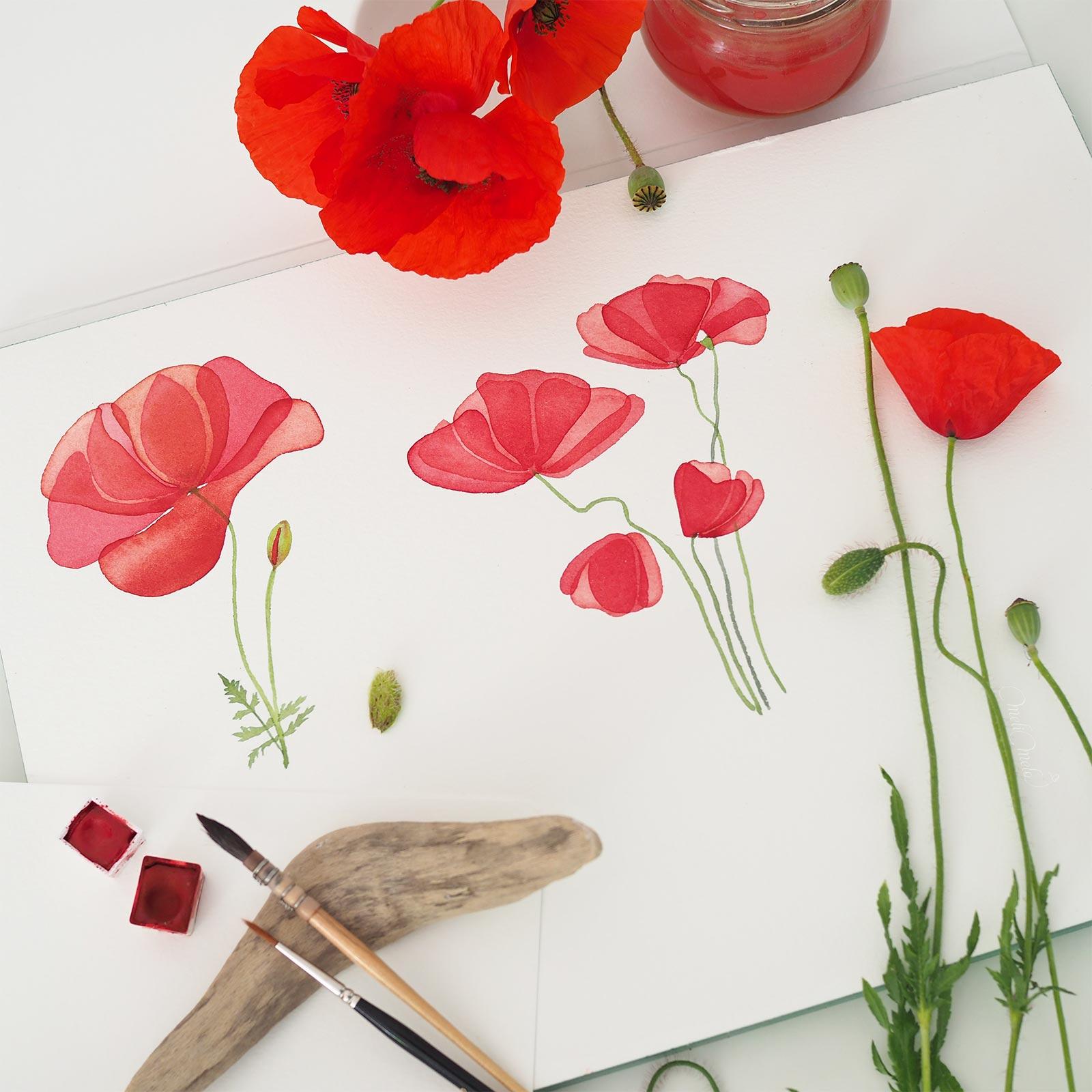 fleurs-coquelicot-aquarelle-windsorandnewton-watercolor-jazperstardust-red-gold-laboutiquedemelimelo