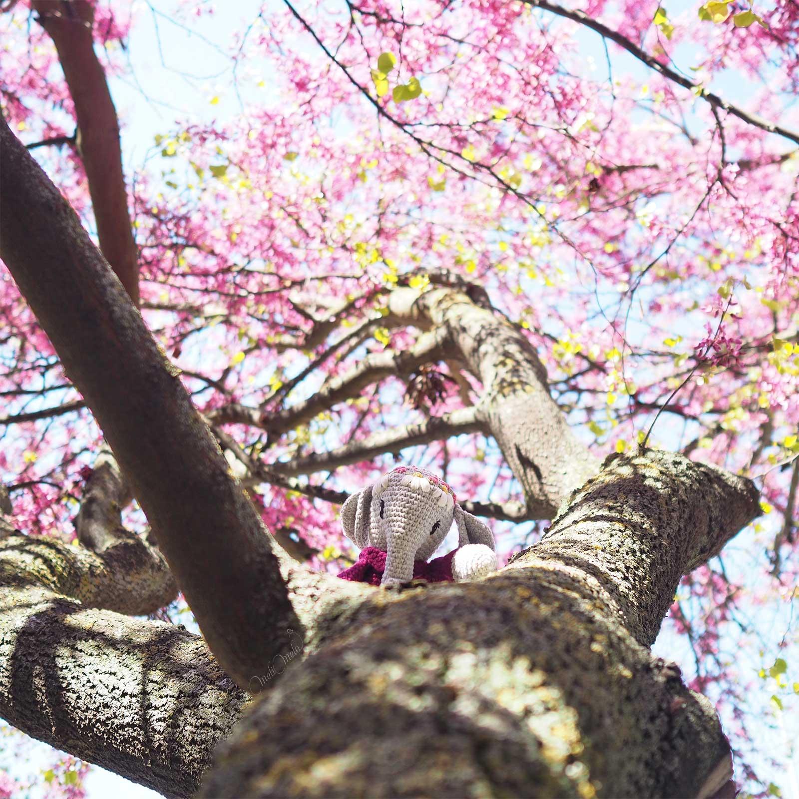 floraison-cercis-arbre-judee-amigurumi-elephant -crochet-laboutiquedemelimelo