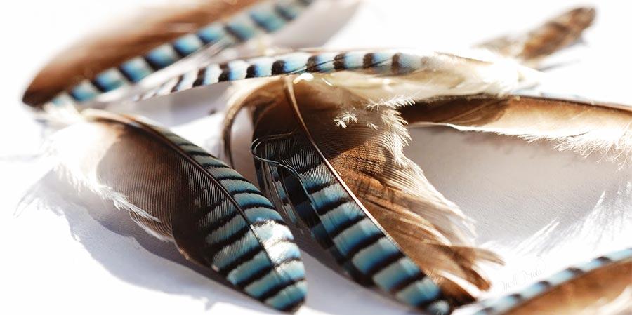 catalogue matières naturelles Air apprêts plumes laboutiquedemelimelo