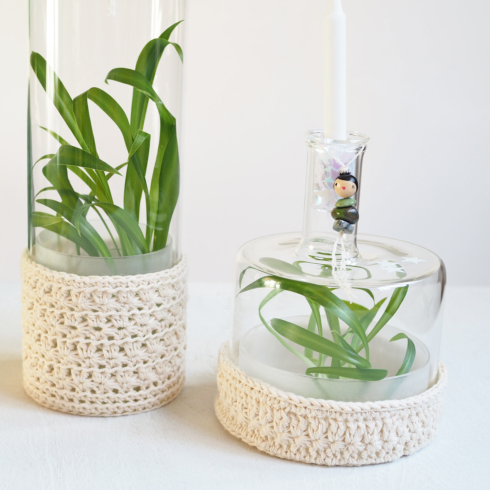 mini-serre plantules chlorophytum chevelu crochet vase déco Ichendorf lespoisplumes laboutiquedemelimelo