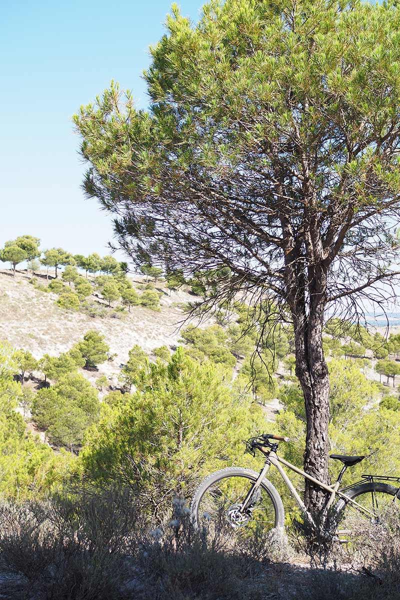 pinar-montes-torozos-surly-bike-yoniquenews-laboutiquedemelimelo