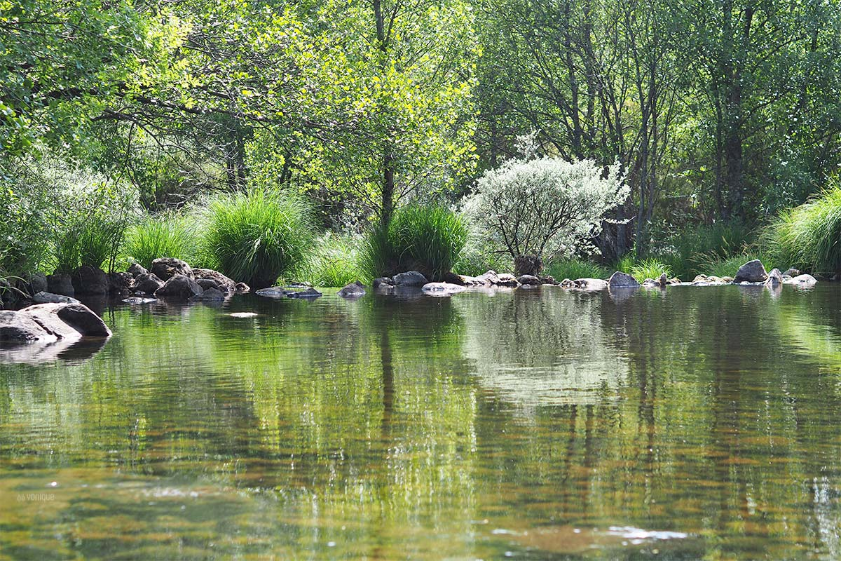 primavera rio tera sanabria zamora yoniquenews