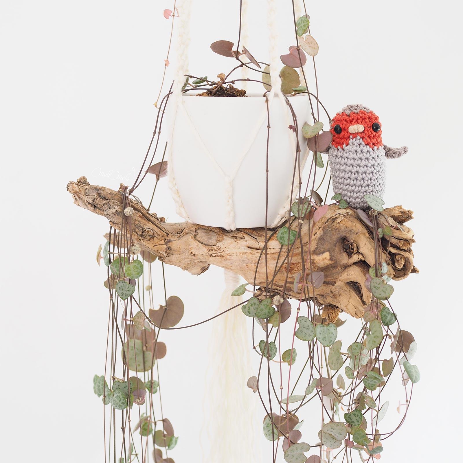 suspension bois ceropegia woodii crochet oiseau rouge-gorge Boutique MeliMelo